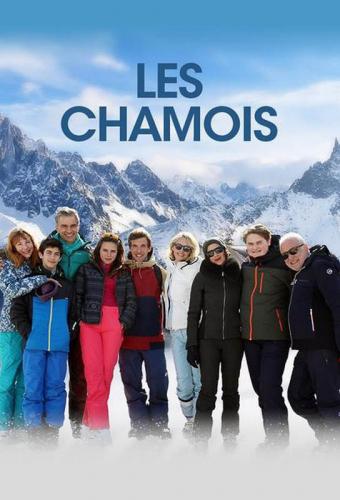 Big Band Story Les Chamois Lefebvre